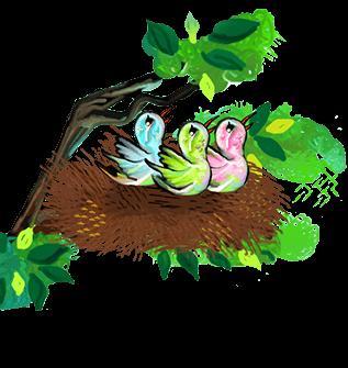 poopshkin-birds